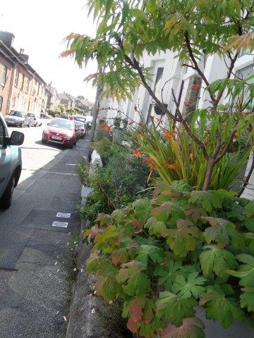 Longley Road