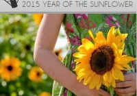 2015: The Year of the Sunflower