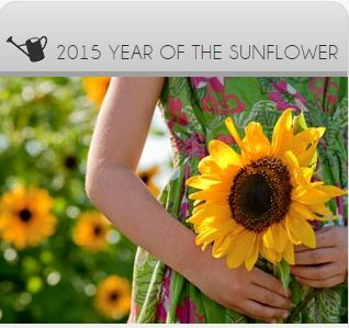 sunflower year
