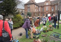 Plant Swap at the Vines Rochester